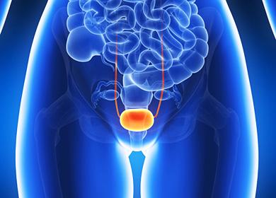 Цистит лечение у кормящих женщин препараты